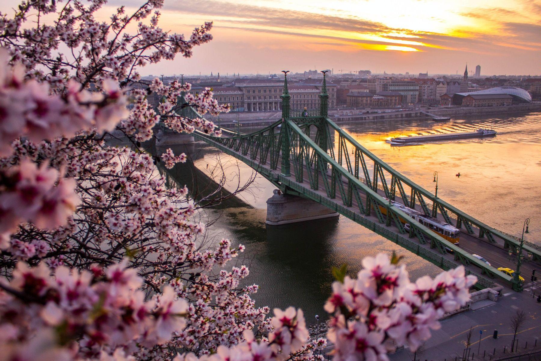 Улюблена Угорщина